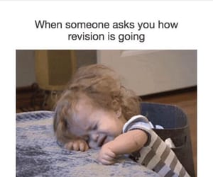college, exam, and lol image