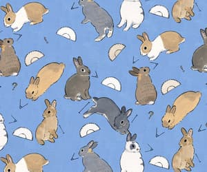 background, bunnies, and bunny image