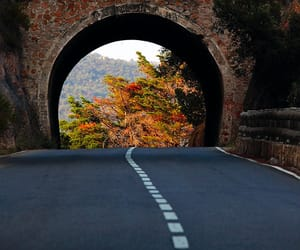 road, autumn, and photography image