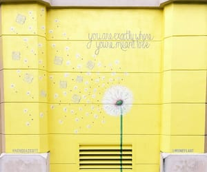 wall, words, and yellow image