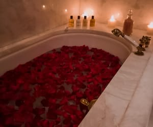 rose, red, and bathroom image