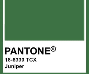 colour, shades of green, and pantone image