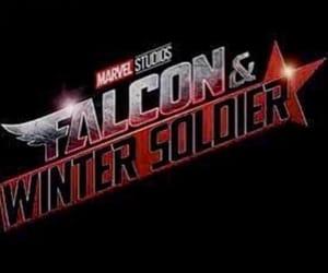 falcon, Marvel, and buckybarnes image
