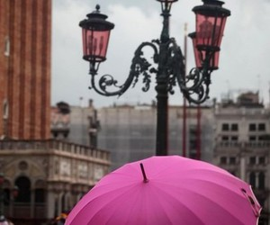 pink, umbrella, and photography image