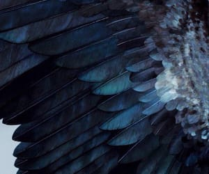 blue, aesthetic, and ravenclaw image
