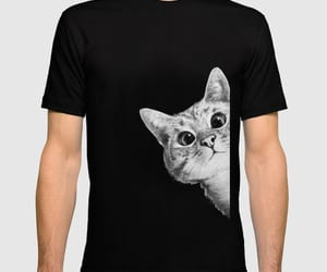 casual, shirt, and cat image