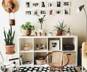 picture, interior design, and plants image