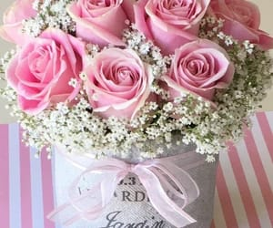 roses, flores, and flowers image