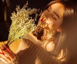 flowers, girl, and photoshoot image