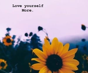 flowers, quote, and self love image