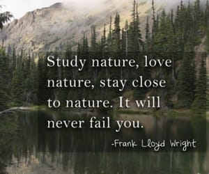 frank lloyd wright, love nature, and stay close image