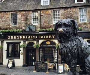 edinburgh, scotland, and greyfriars bobby image