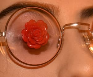 glass, rose, and vintage image