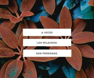 frases, miracle, and love image