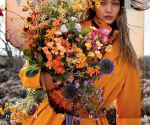 fashion, hadid family farm, and fashion magazine image