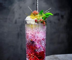 cocktail and drinks image