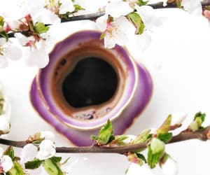 blossom, coffee, and cup of coffee image