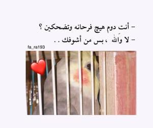 حُبْ and غزل image