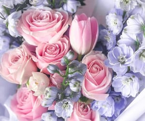 flowers, light purple, and pink image
