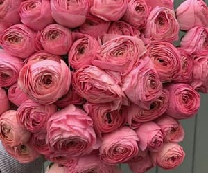 bouquet, flowers, and bouquet of ranunculus image