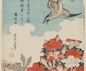 art, flowers, and japan image