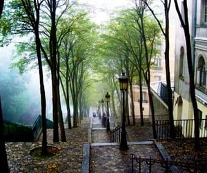 paris, tree, and montmartre image