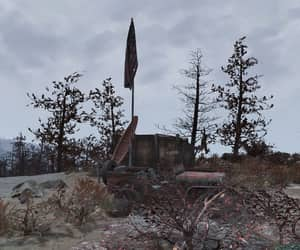 fallout, nature, and flag image