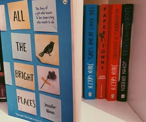books, bookworm, and finch image