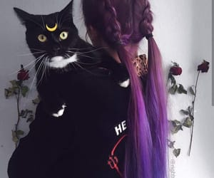 black, kitty, and hair image