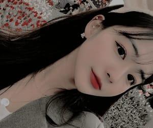 aesthetic, flower, and korean image