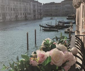 flowers and venice image