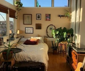 aesthetic, room, and plants image