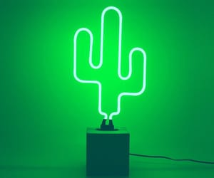 cactus, tumblr, and green image