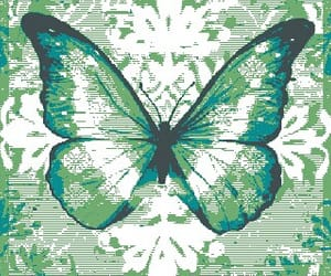 animal, background, and butterfly image