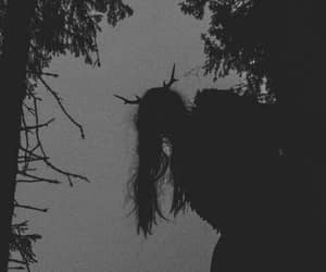 dark, aesthetic, and forest image