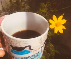beauty, blossom, and coffee image