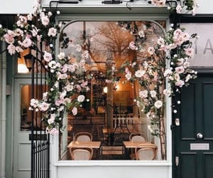 cafe and flowers image