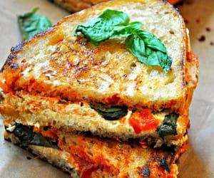 sandwich and toastie image