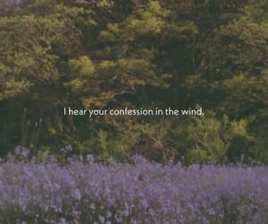 quotes, spring, and confess image
