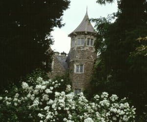 flowers, castle, and vintage image
