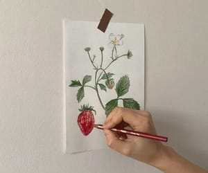aesthetic, strawberry, and art image