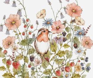 flowers, bird, and botany image