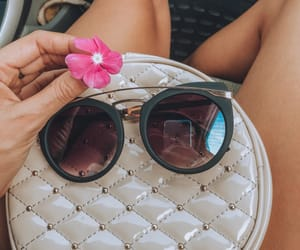 cars, fashion, and flowers image