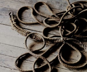 floorboards, rope, and shadows image