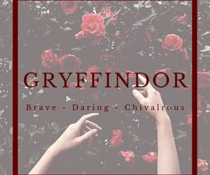 brave, daring, and gryffindor image