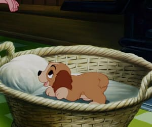 disney, lady and the tramp, and cute image