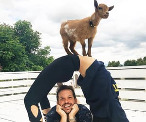 goat, heath hussar, and vlog squad image