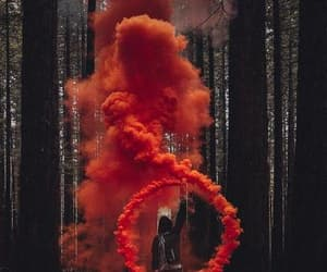 red, smoke, and forest image