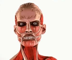 art, bones, and face image