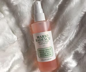 mario badescu and rosewater image